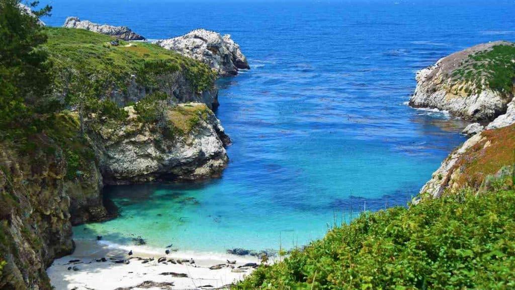 Udforsk det smukke naturlandskab i Big Sur-distriktet.