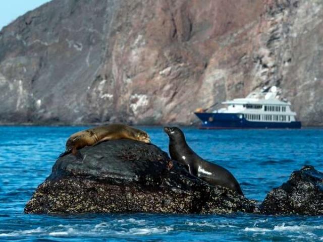 Galapagos.