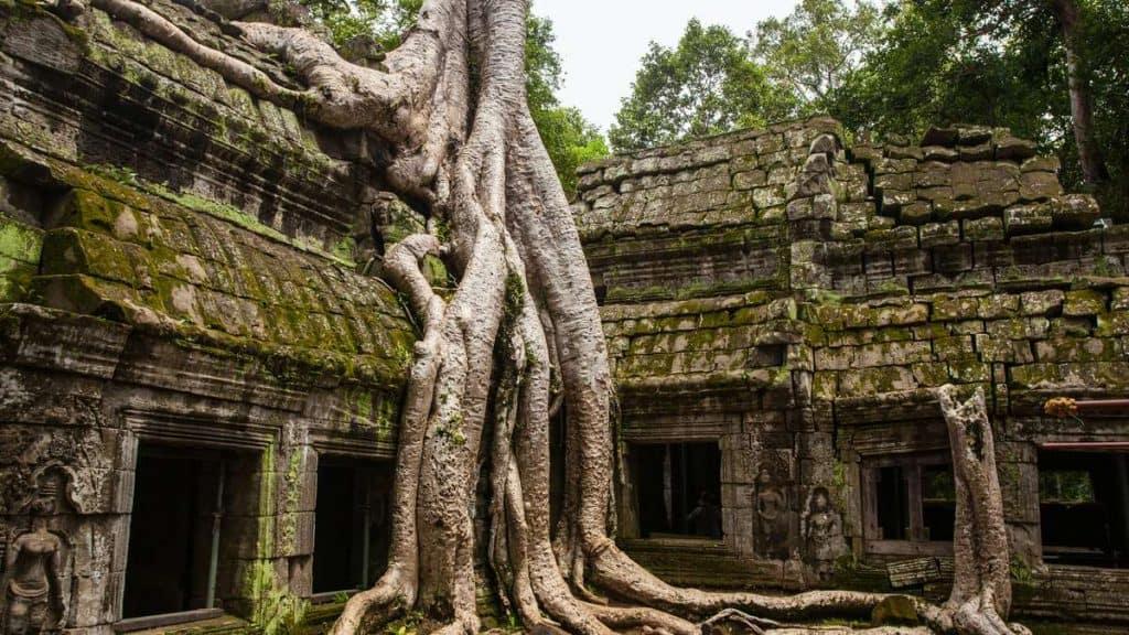 I Angkor Wat oplever man de karakteristiske tempelbygninger på nært hold.