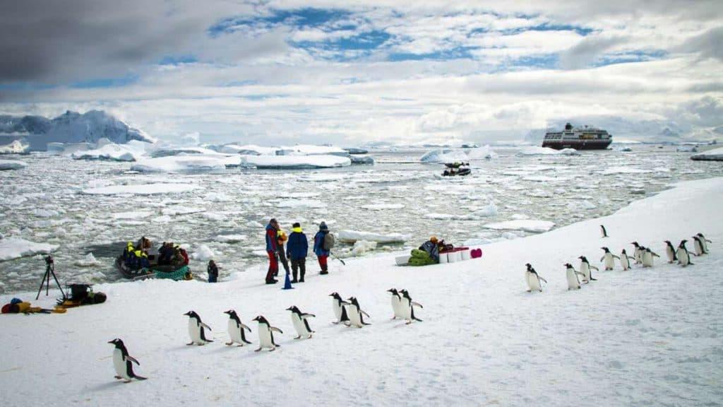 Med Hurtigruten til Antarktis.